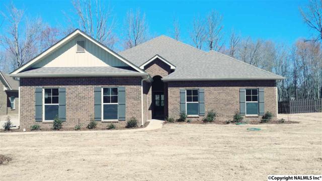 124 Twin Springs Drive, Harvest, AL 35749 (MLS #1081713) :: Amanda Howard Real Estate™