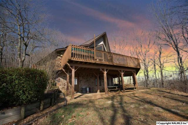 1175 County Road 732, Cedar Bluff, AL 35959 (MLS #1083355) :: Capstone Realty