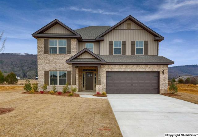 7490 Chaco Street, Owens Cross Roads, AL 35763 (MLS #1084022) :: Capstone Realty