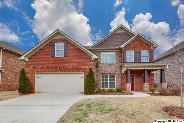 115 SW Rainwood Drive, Huntsville, AL 35824 (MLS #1084263) :: Legend Realty