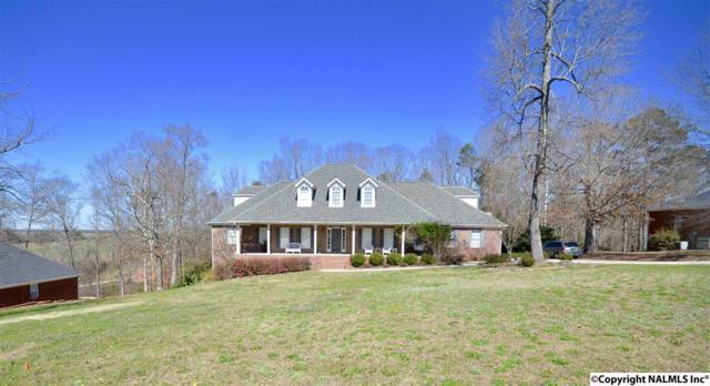 1601 Elaine Drive, Hartselle, AL 35640 (MLS #1086398) :: Amanda Howard Real Estate™