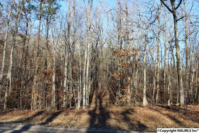NA Raintree Drive, Centre, AL 35960 (MLS #1086515) :: Coldwell Banker of the Valley