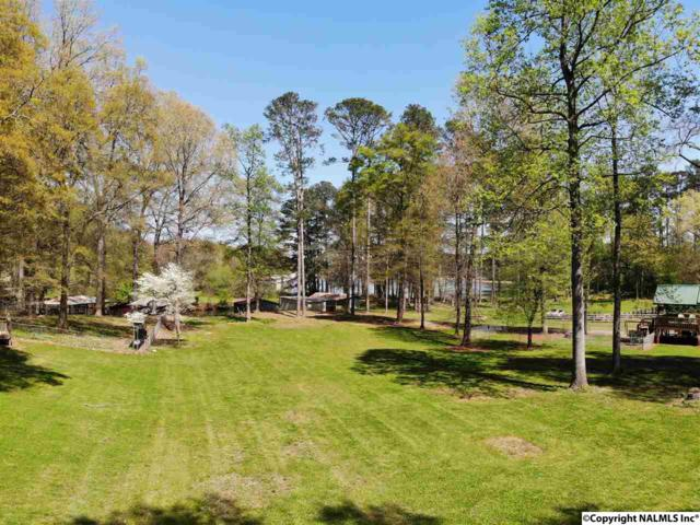 31 Wray Road, Guntersville, AL 35976 (MLS #1090909) :: The Pugh Group RE/MAX Alliance