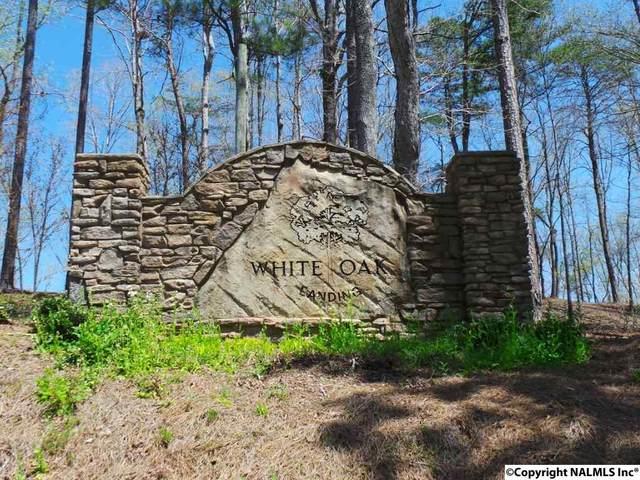 0 White Oak Road, Arley, AL 35541 (MLS #1092149) :: MarMac Real Estate