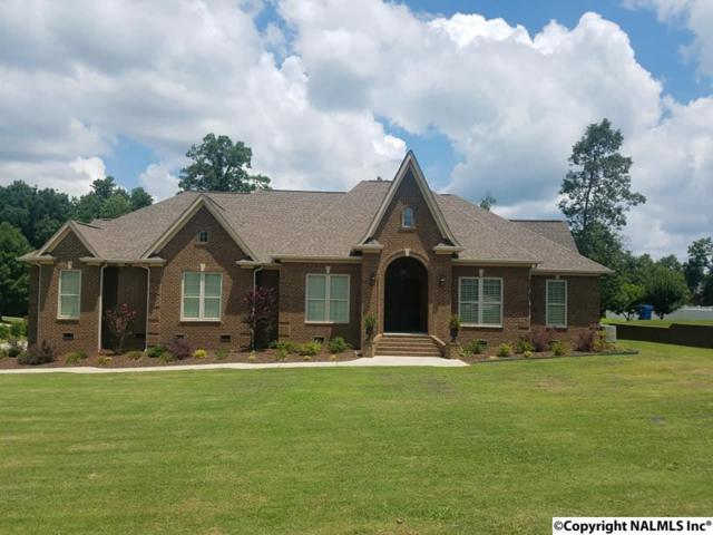 225 Givake Drive, Arab, AL 35016 (MLS #1098456) :: Intero Real Estate Services Huntsville