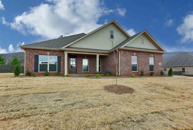 7316 Se Destiny Drive, Owens Cross Roads, AL 35763 (MLS #1104141) :: Legend Realty