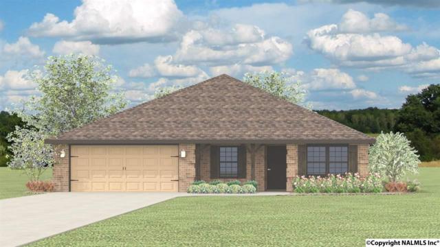 117 Heritage Way, Toney, AL 35773 (MLS #1104374) :: Eric Cady Real Estate