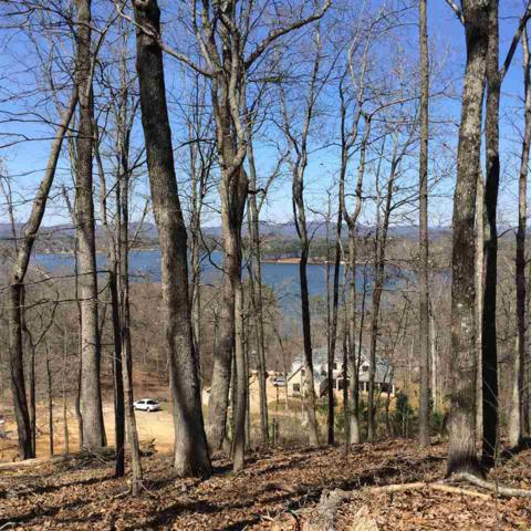 0 Pinnacle Point, Scottsboro, AL 35769 (MLS #1104583) :: Legend Realty