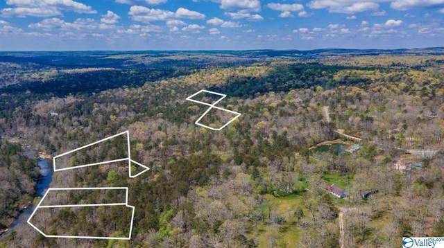 19 Road 903, Mentone, AL 35984 (MLS #1108162) :: Coldwell Banker of the Valley