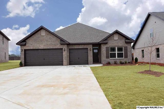 204 Iron Circle, Meridianville, AL 35759 (MLS #1108704) :: Capstone Realty