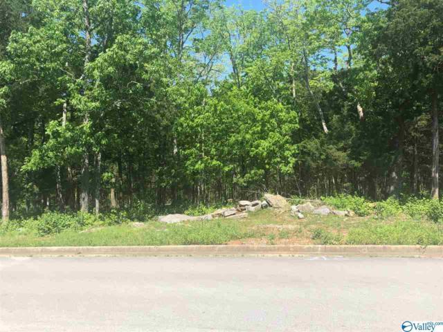 4042 Hawks Way, Huntsville, AL 35811 (MLS #1117602) :: Capstone Realty