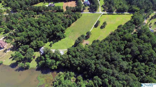 415 Charada Lake Road, Rainbow City, AL 35906 (MLS #1119051) :: Weiss Lake Alabama Real Estate