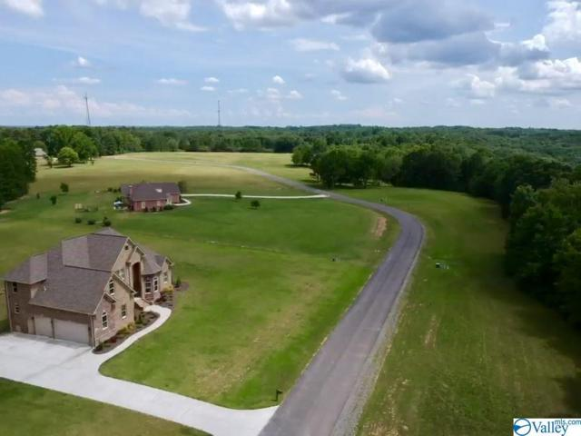 00 Worthington Lane Lot 15, Guntersville, AL 35976 (MLS #1121562) :: Amanda Howard Sotheby's International Realty