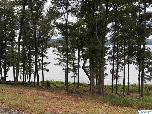 13 Reserve Drive, Guntersville, AL 35976 (MLS #1121673) :: Amanda Howard Sotheby's International Realty