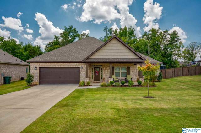102 Hollybrook Drive, Madison, AL 35757 (MLS #1124521) :: Capstone Realty