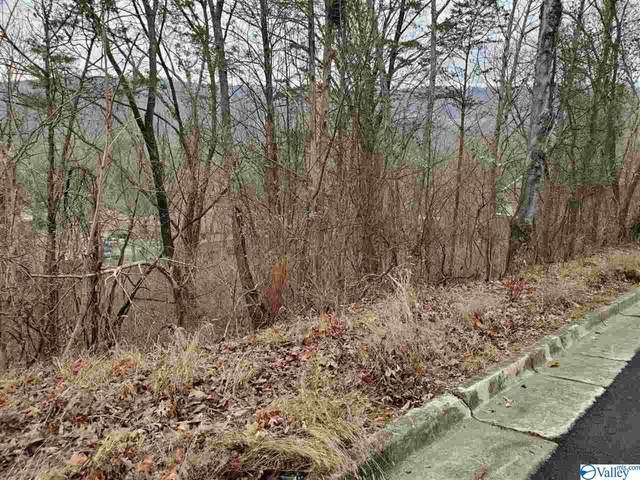 Lot 14 Smoke Rise Road, Huntsville, AL 35802 (MLS #1135641) :: LocAL Realty