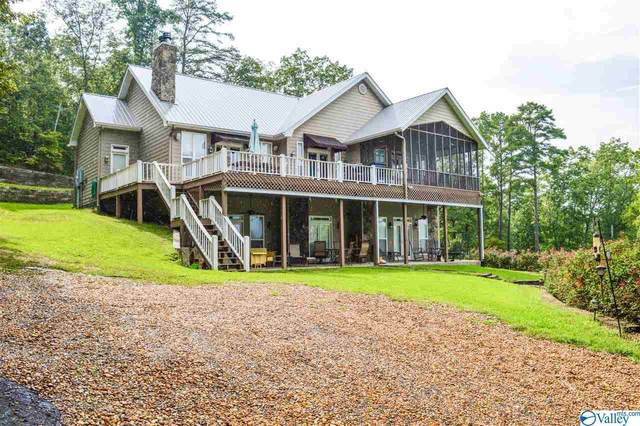 355 County Road 594, Leesburg, AL 35983 (MLS #1135862) :: Southern Shade Realty
