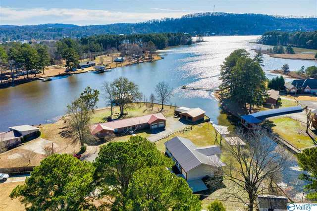 4540 Crystal Point, Southside, AL 35907 (MLS #1136430) :: Southern Shade Realty