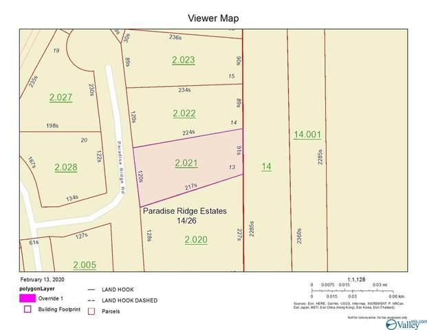Lot 13 Paradise Ridge Road, Leesburg, AL 35983 (MLS #1137161) :: Green Real Estate