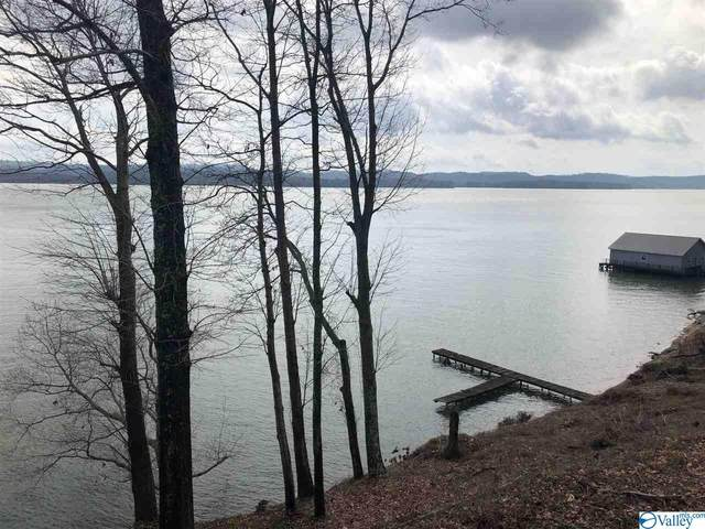 00 Pine Island Point, Guntersville, AL 35769 (MLS #1138575) :: Capstone Realty