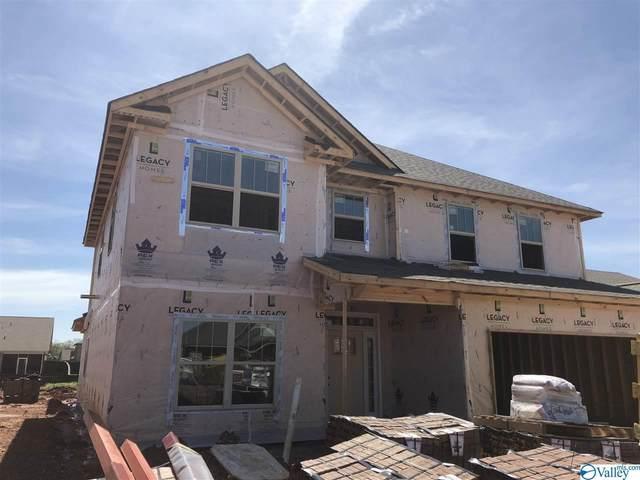 238 Holt Street, Meridianville, AL 35759 (MLS #1140149) :: RE/MAX Distinctive | Lowrey Team
