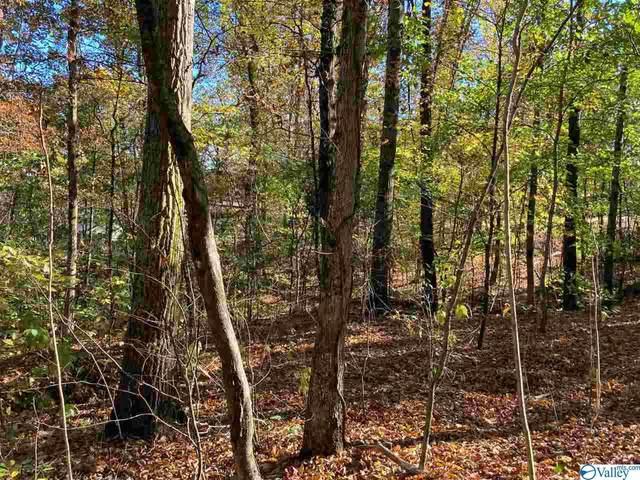 221 Creek Trail, Madison, AL 35758 (MLS #1156639) :: Southern Shade Realty