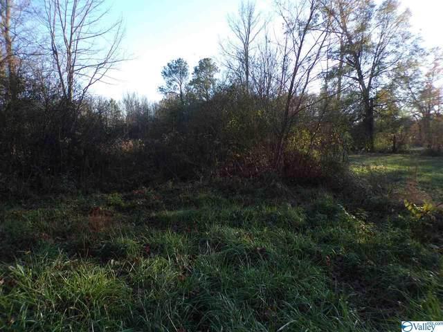0 County Road 236, Town Creek, AL 35672 (MLS #1770397) :: MarMac Real Estate