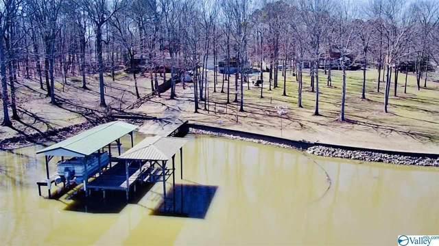 1745 County Road 131, Cedar Bluff, AL 35959 (MLS #1775675) :: Southern Shade Realty