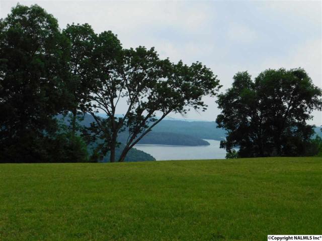 5 Joeffie Road, Grant, AL 35747 (MLS #1050073) :: Amanda Howard Real Estate™