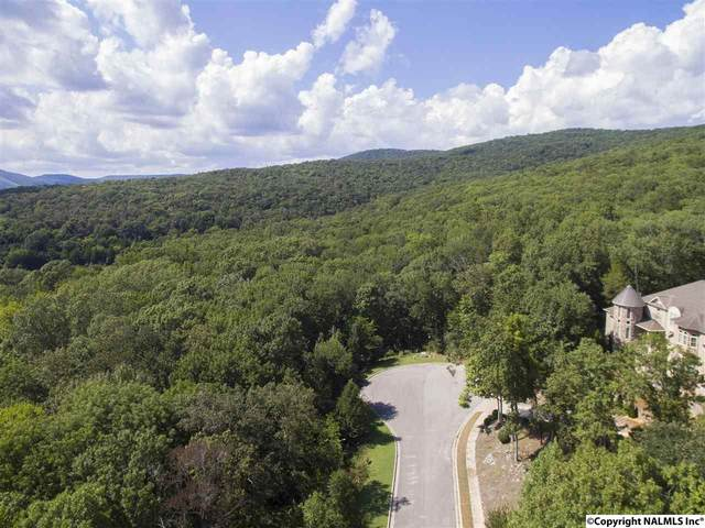 S Grande Woods Drive, Hampton Cove, AL 35763 (MLS #1058479) :: MarMac Real Estate