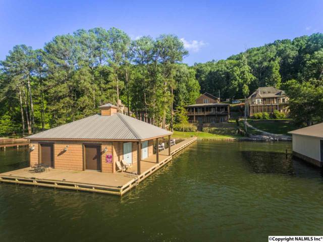466 Snug Harbor Road, Grant, AL 35747 (MLS #1060426) :: Intero Real Estate Services Huntsville