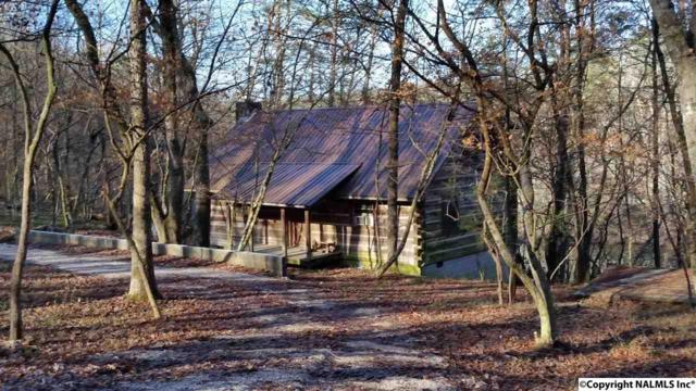 170 County Road 624, Mentone, AL 35984 (MLS #1062021) :: Capstone Realty