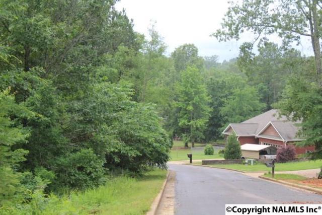 30 Taylor Ridge Road, Leesburg, AL 35983 (MLS #1069749) :: Southern Shade Realty