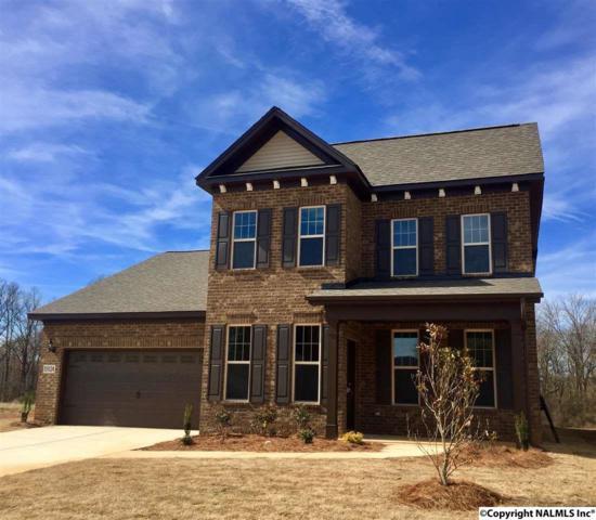 15024 Lakeside Trail, Huntsville, AL 35803 (MLS #1072714) :: Capstone Realty