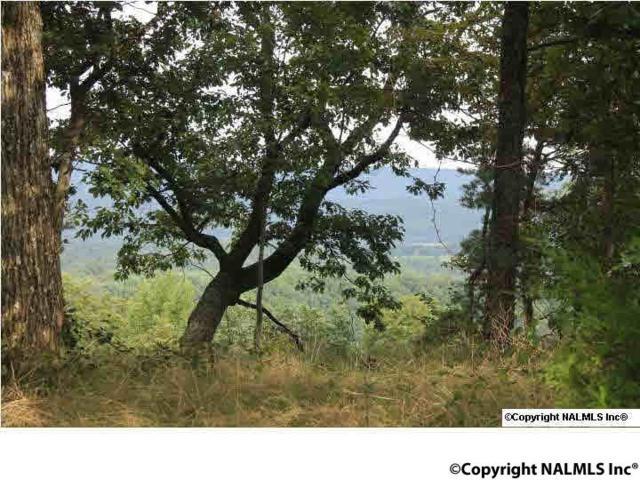 County Road 1010, Fort Payne, AL 35968 (MLS #1076011) :: Amanda Howard Sotheby's International Realty