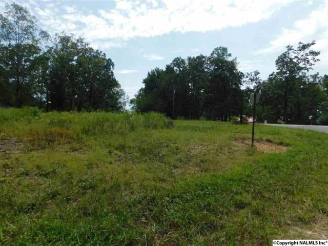Lot 81 County Road 608, Cedar Bluff, AL 35959 (MLS #1077690) :: Eric Cady Real Estate