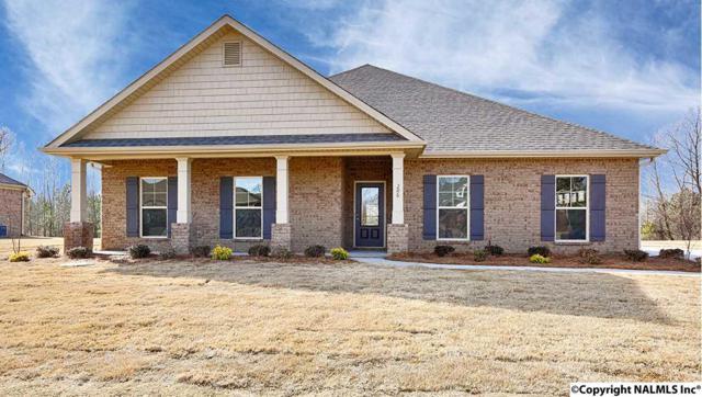 206 Waterbrook Lane, Harvest, AL 35749 (MLS #1077866) :: Amanda Howard Real Estate™