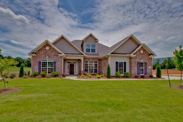 6009 Peach Pond Way, Owens Cross Roads, AL 35763 (MLS #1086165) :: RE/MAX Distinctive | Lowrey Team