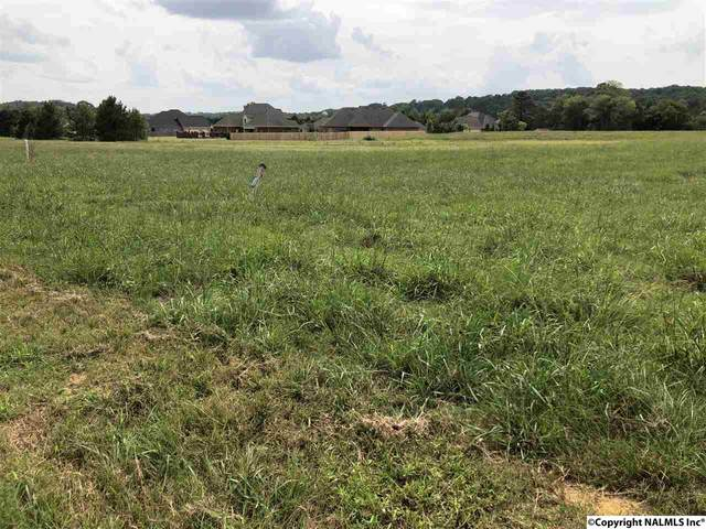 3421 South Chapel Hill Road Lot 1, Decatur, AL 35603 (MLS #1101210) :: RE/MAX Distinctive | Lowrey Team