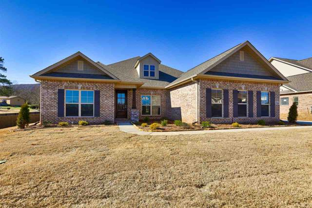 7314 Se Destiny Drive, Owens Cross Roads, AL 35763 (MLS #1101459) :: Legend Realty