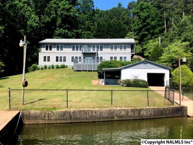 140 County Road 405, Leesburg, AL 35983 (MLS #1108674) :: Intero Real Estate Services Huntsville