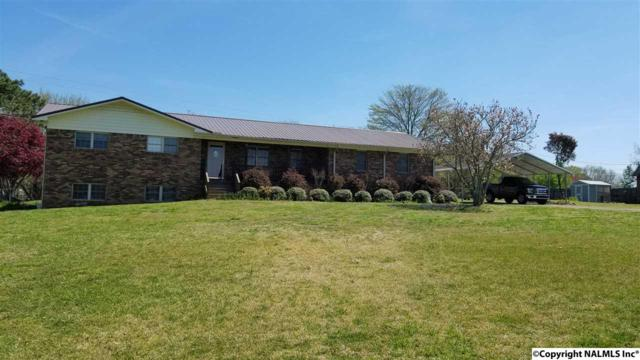 5112 E Hwy 55, Eva, AL 35621 (MLS #1109842) :: Legend Realty