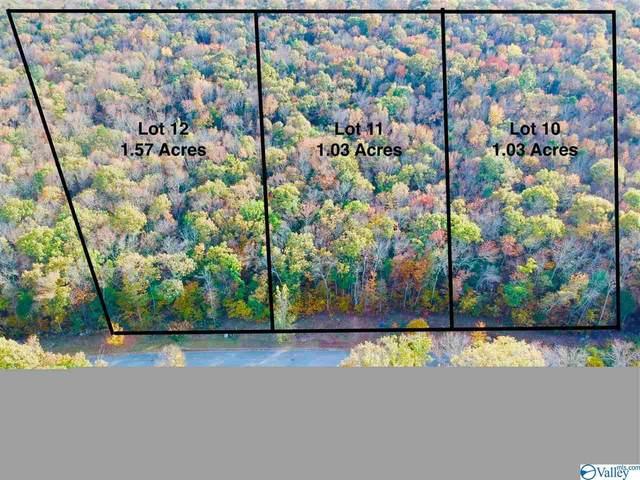 0 Marina Park Drive, Huntsville, AL 35803 (MLS #1124734) :: Green Real Estate