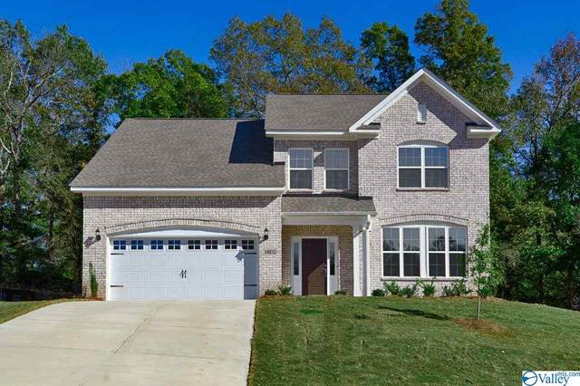 14102 Grey Goose Lane, Harvest, AL 35749 (MLS #1136353) :: RE/MAX Unlimited
