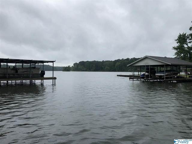 940 County Road 570, Rogersville, AL 35652 (MLS #1137152) :: MarMac Real Estate