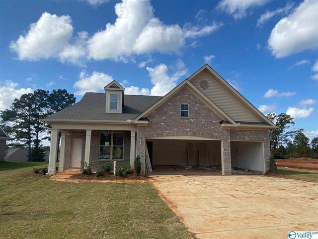 14355 Grey Goose Lane, Harvest, AL 35749 (MLS #1140366) :: RE/MAX Unlimited
