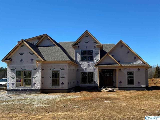 19855 Capitol Hill Drive, Tanner, AL 35671 (MLS #1156855) :: MarMac Real Estate