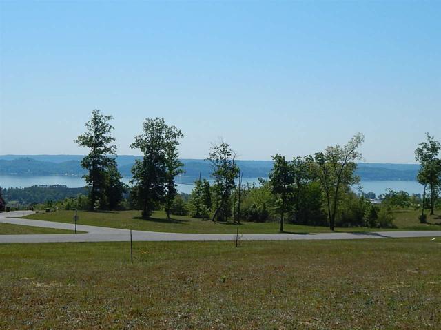 116 Legendary Drive, Guntersville, AL 35976 (MLS #245943) :: MarMac Real Estate