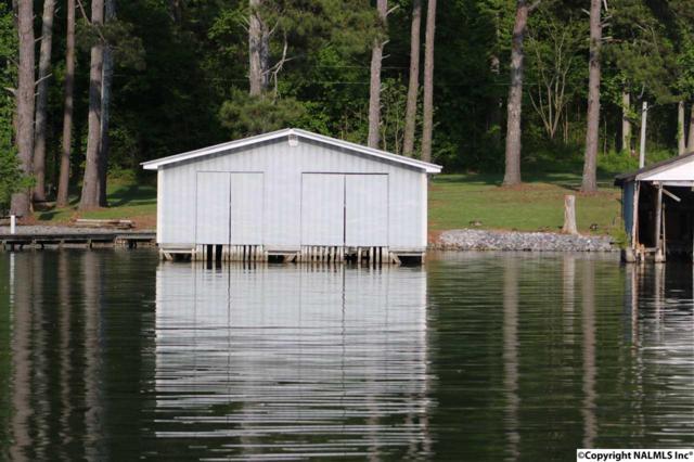 104 Pine Dale Circle, Guntersville, AL 35976 (MLS #541491) :: Weiss Lake Alabama Real Estate