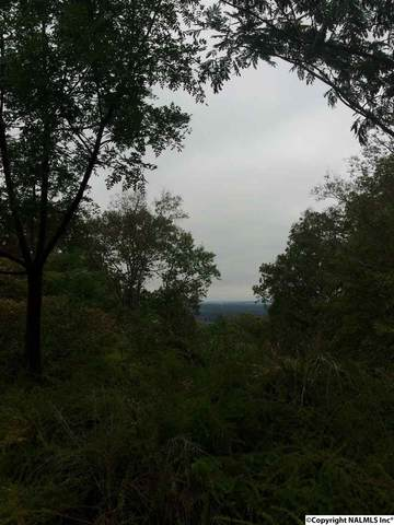 0 Apache Drive, Huntsville, AL 35810 (MLS #1028074) :: Revolved Realty Madison
